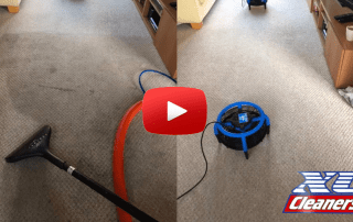carpet cleaning in the wirral