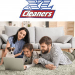 carpet cleaning in the home
